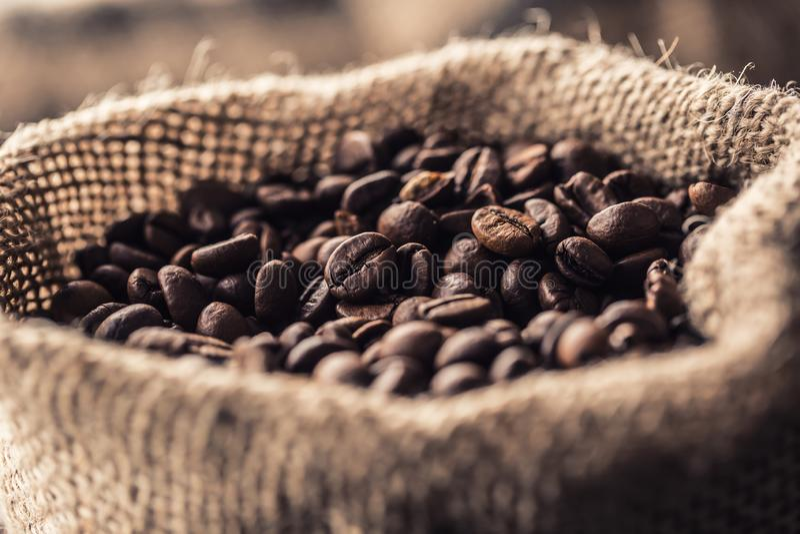 Grains de café rôtis frais en gros plan dans le sac photos libres de droits