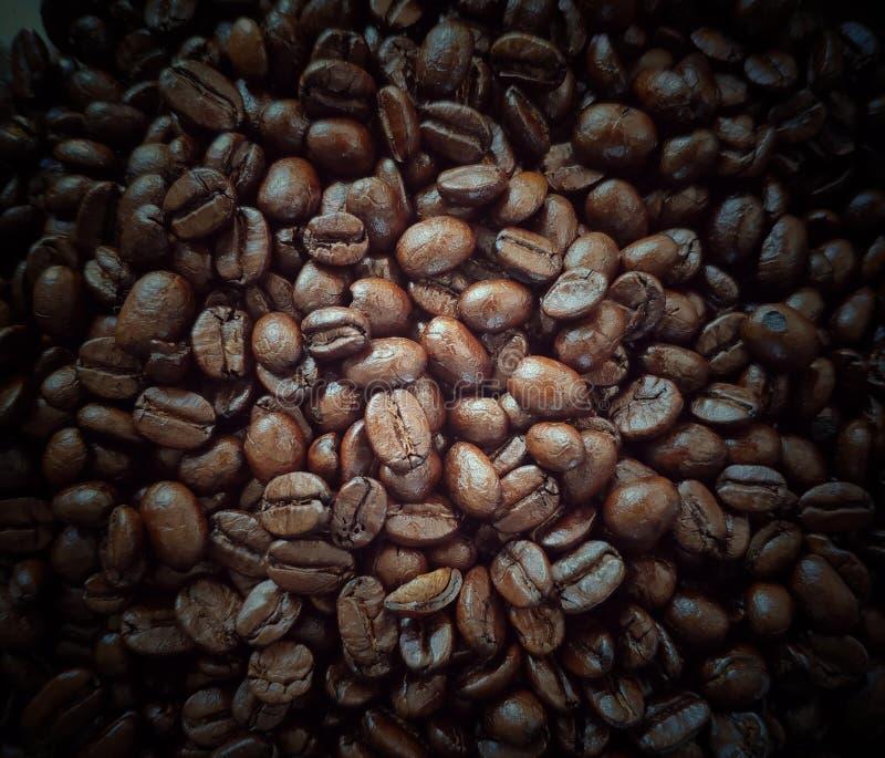 Grains de café rôtis, pleine image de cadre photographie stock