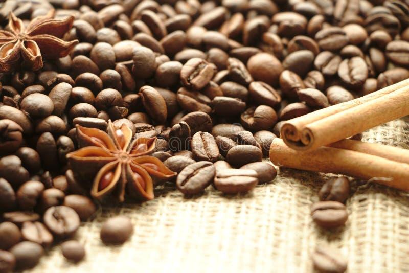 Grains de café rôtis sur le fond brun de toile de jute avec des épices photos stock
