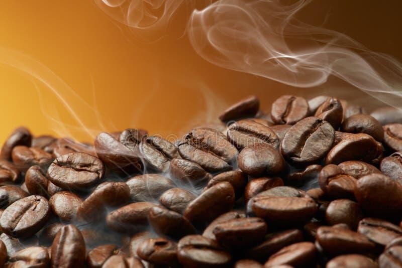 Grains de café rôtis images libres de droits
