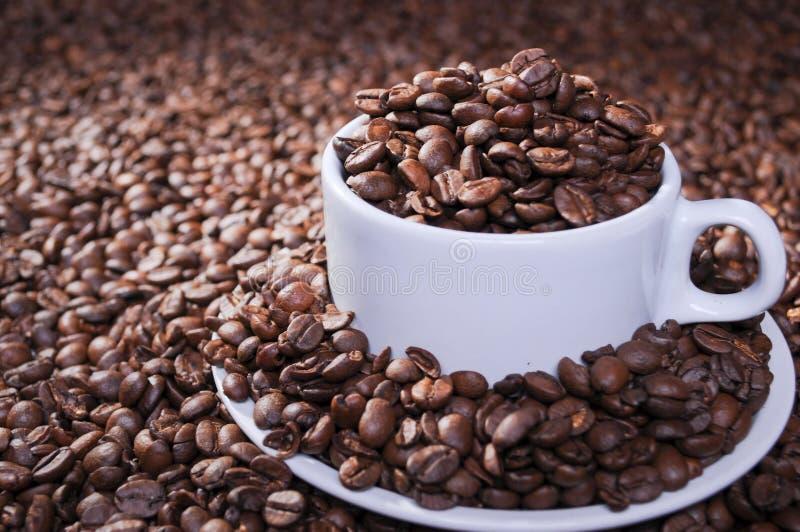 Grains de café rôtis par totalité dans la cuvette image libre de droits