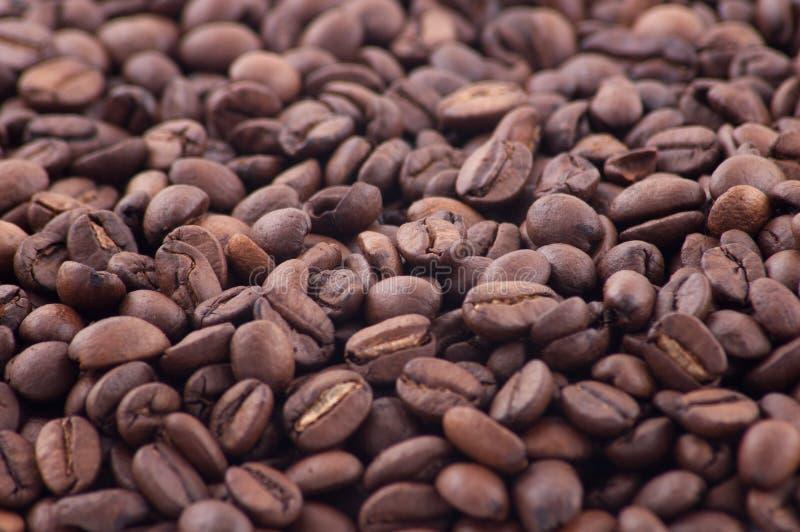 Grains de café renversés images stock