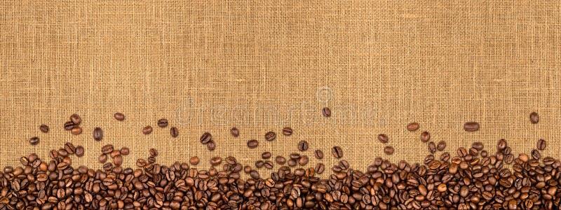Grains de café sur la texture naturelle de toile de jute photos stock