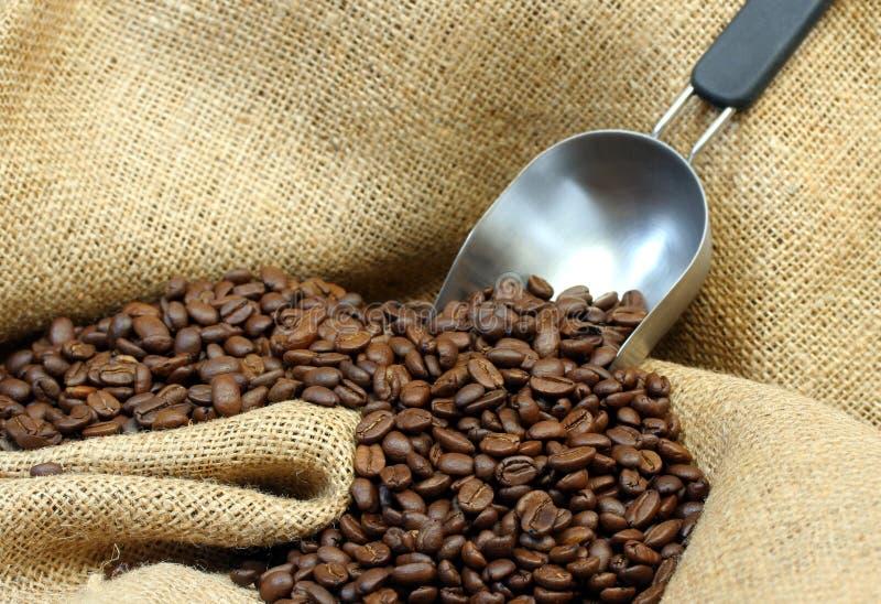 Grains de café, toile de jute et épuisette images stock
