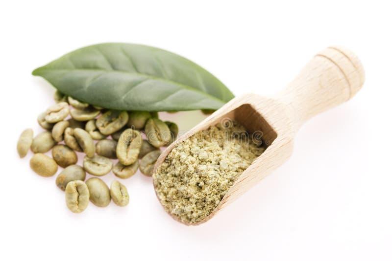Grains de café verts avec la feuille photos stock