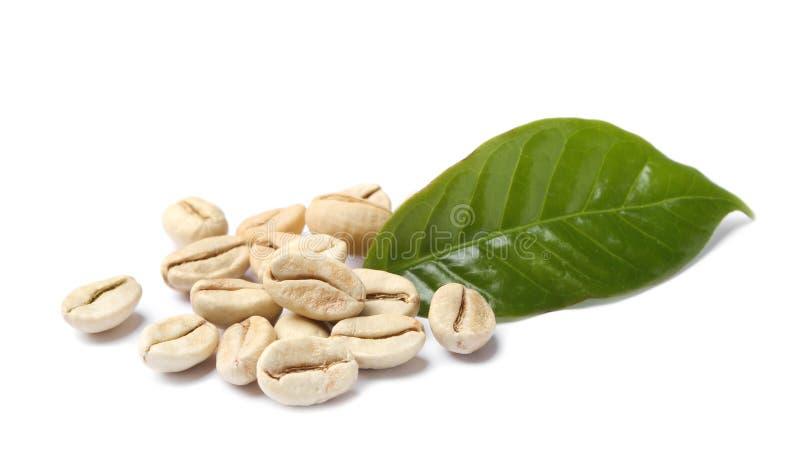 Grains de café verts et feuille fraîche image stock