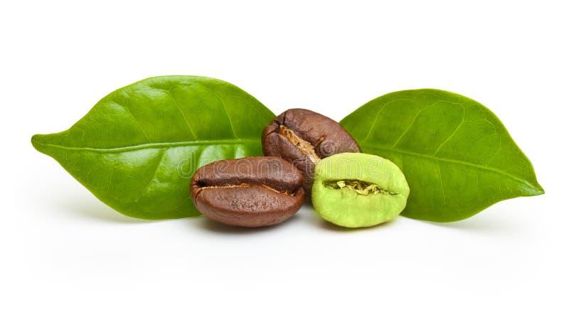 Grains de café verts et noirs images libres de droits