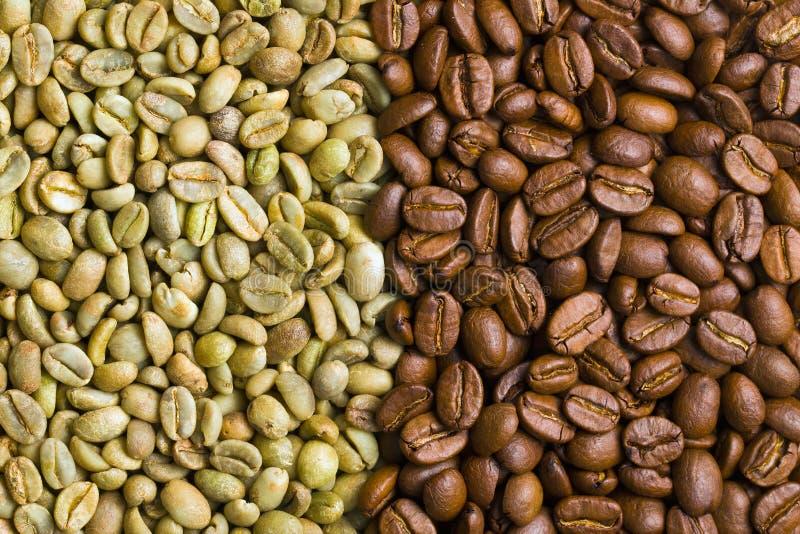 Grains de café verts et rôtis photographie stock libre de droits