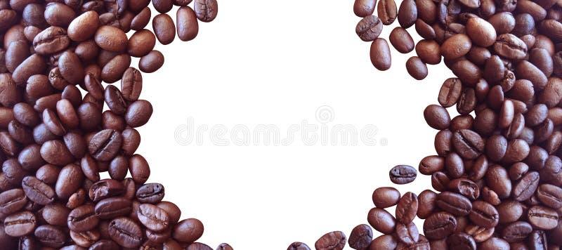 Grains de caf? d'isolement sur le fond blanc pour la conception graphique photo stock