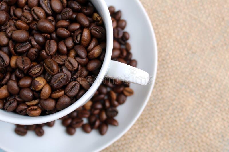 Grains de caf? r?tis frais Pleine tasse de grains de café rôtis photos libres de droits