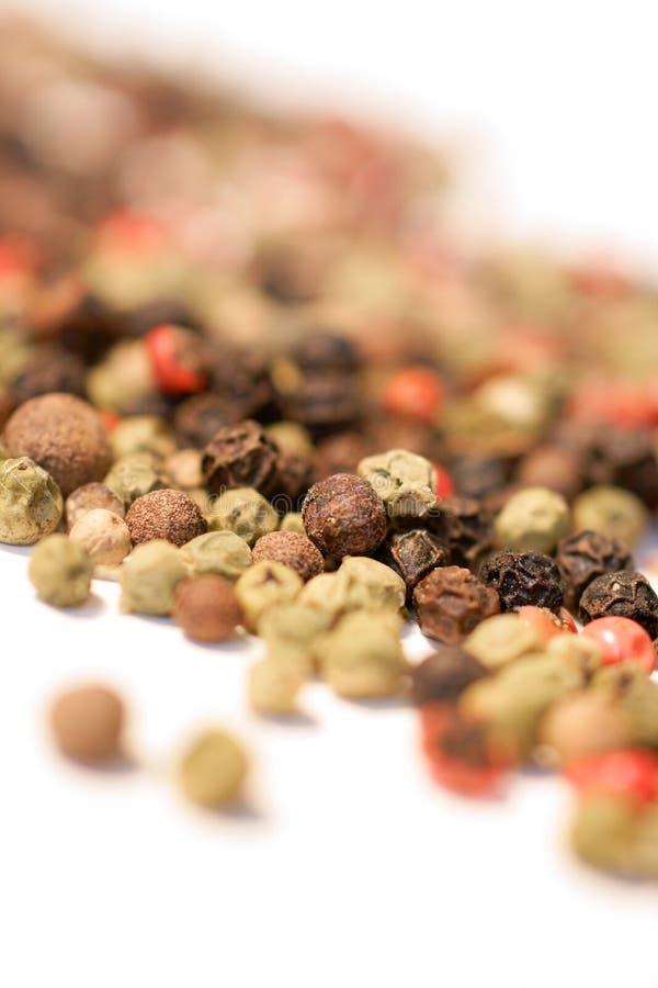 Grains de poivre assortis photo stock