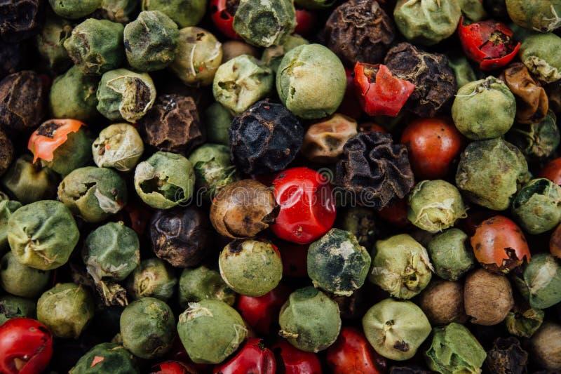Grains de poivre assortis photographie stock libre de droits