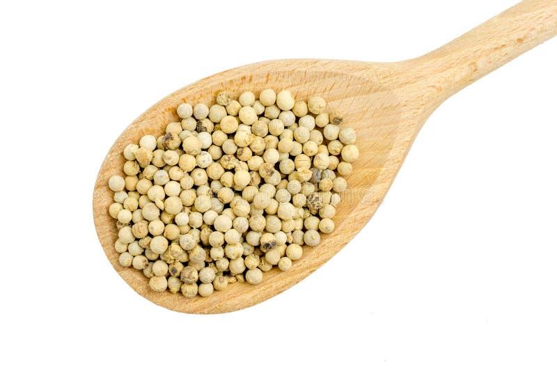 Grains de poivre de poivre blanc photo libre de droits