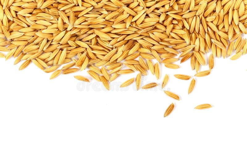 Grains de riz d'isolement sur le blanc photographie stock libre de droits
