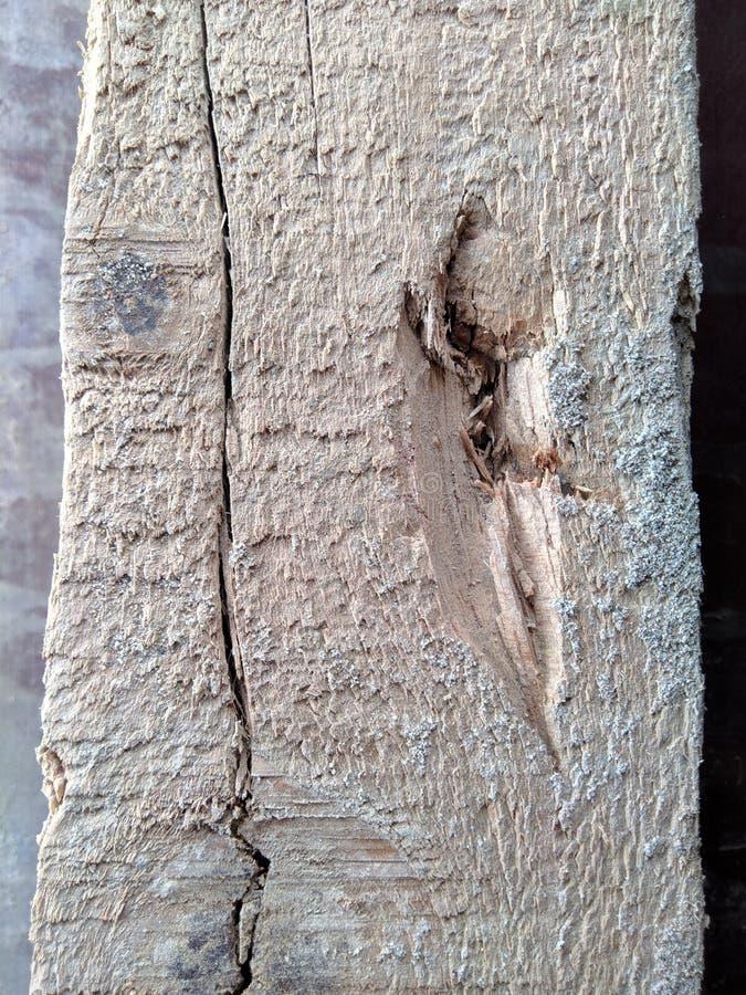 Grains en bois et textures avec des fissures sur la latte photographie stock