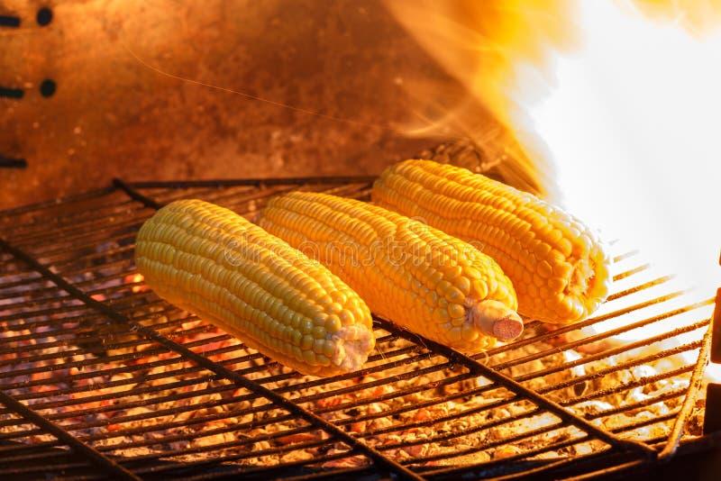 Download Grains grillés photo stock. Image du rôti, normal, organique - 45352706