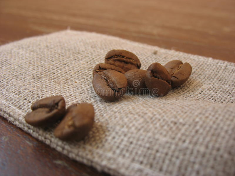 Grains of natural coffee stock photos