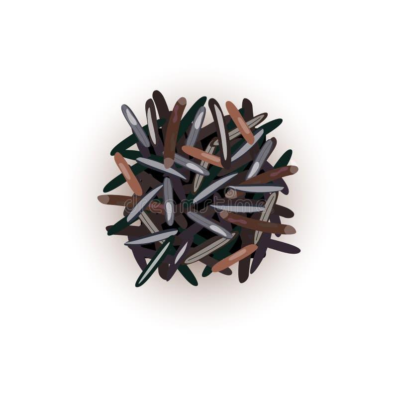 Grains noirs sauvages de riz Illustration de vecteur Pour culinaire, café, illustration libre de droits
