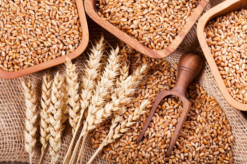 Grains and wheat ears on a wooden table stock photo