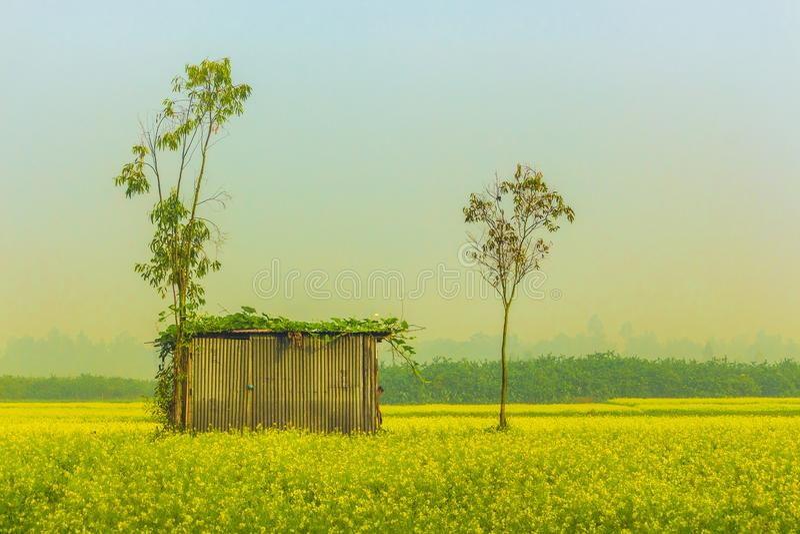 Gram Bangla royalty free stock image