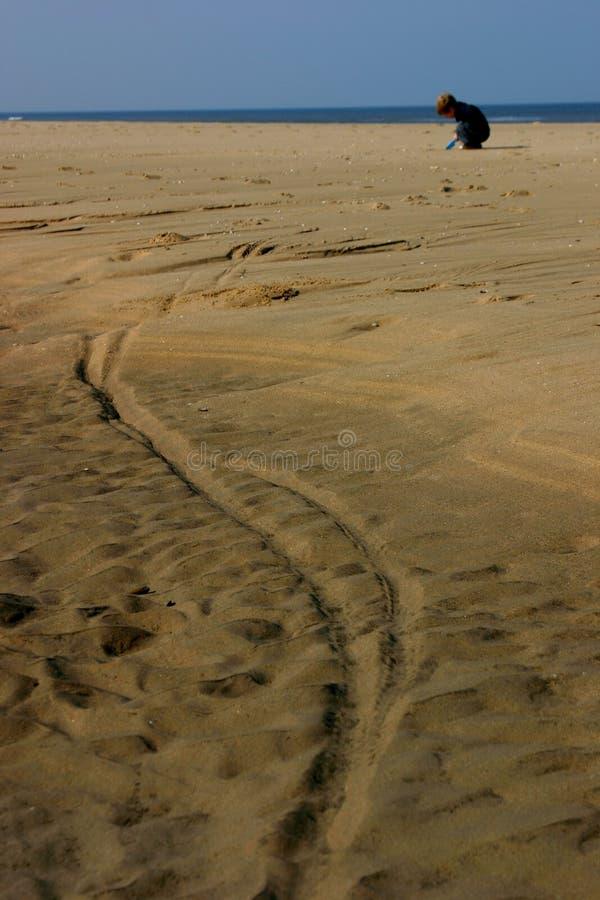 Download Gram na plaży obraz stock. Obraz złożonej z piasek, plaża - 125115