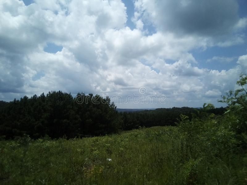 Grama alta do moutain sob um céu azul imagens de stock royalty free