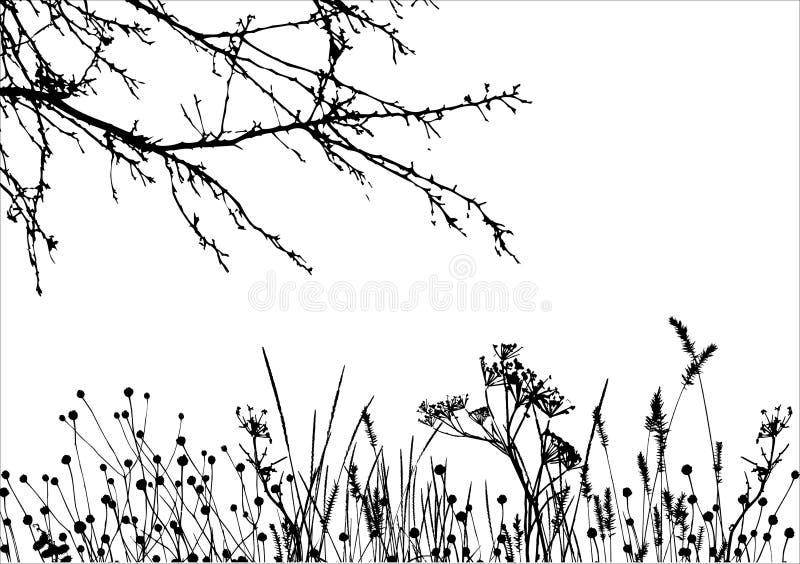 Grama & árvore/silhueta do vetor ilustração stock