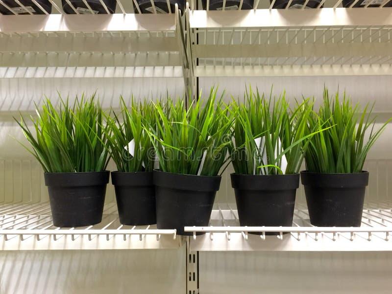 Grama artificial verde na prateleira foto de stock royalty free