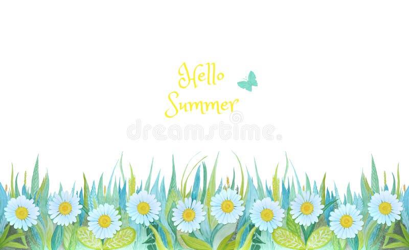 Grama azul e verde com flores brilhantes Camomilas isoladas no fundo branco ilustração do vetor