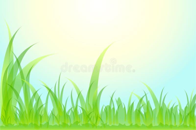 Download Grama Bonita Do Fundo Floral. Ilustração do Vetor - Ilustração de ambiente, fresco: 26523508