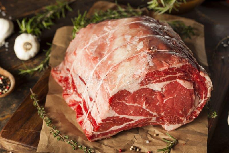 Grama crua Fed Prime Rib Meat fotografia de stock royalty free