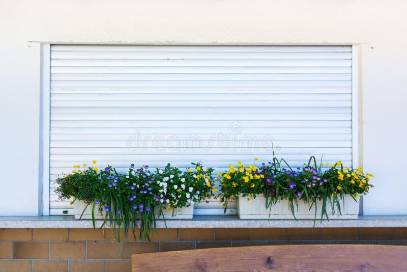 Grama da caixa do plantador da flor sobre a loja alemão de Rolladen do metal fechado imagens de stock