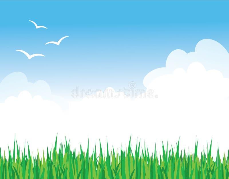Grama de encontro a um céu azul ilustração do vetor