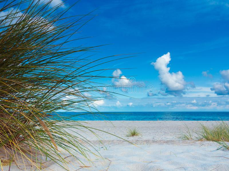 A grama de marram, a praia e o mar fotografia de stock royalty free
