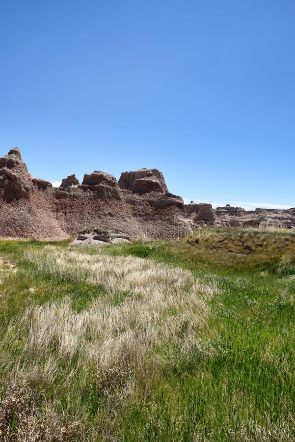 Grama de pradaria e Pinacles no parque nacional do ermo fotos de stock