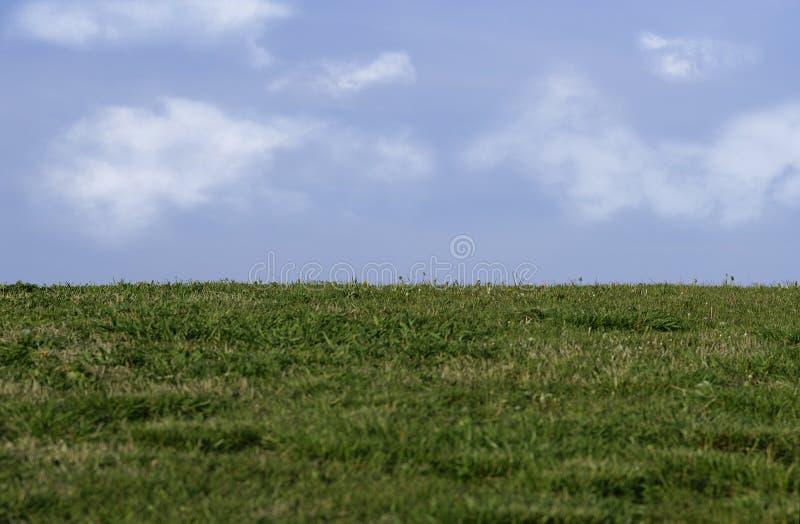 Download Grama e céu imagem de stock. Imagem de nuvens, terra, campo - 100405