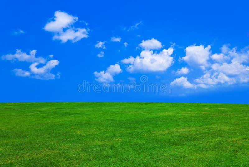 Grama e céu nebuloso imagem de stock royalty free