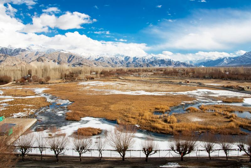 Grama e montanha de Brown Leh Ladakh foto de stock royalty free