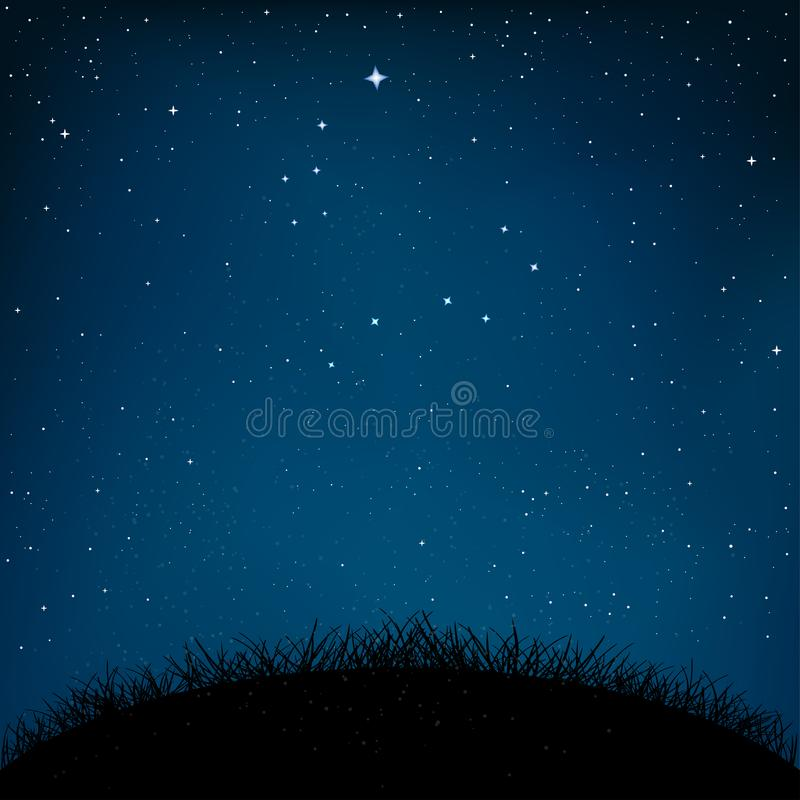 Grama estrelado e terra do céu da noite ilustração stock