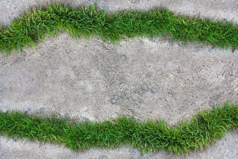 A grama no assoalho do cimento imagem de stock royalty free