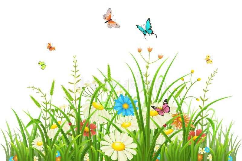 Grama verde com flores ilustração stock