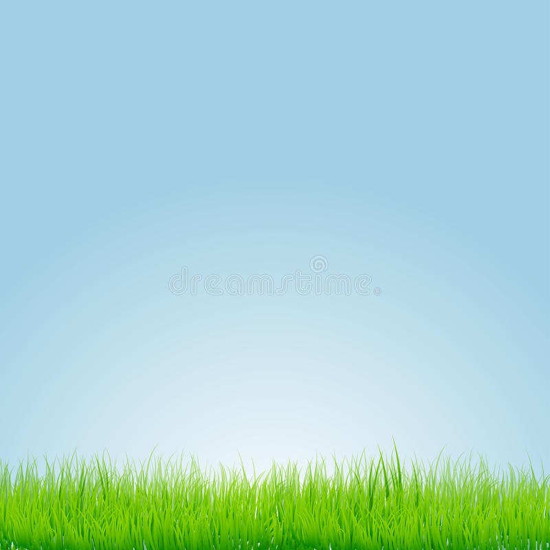 Grama verde com fundo azul Ilustração do vetor ilustração stock