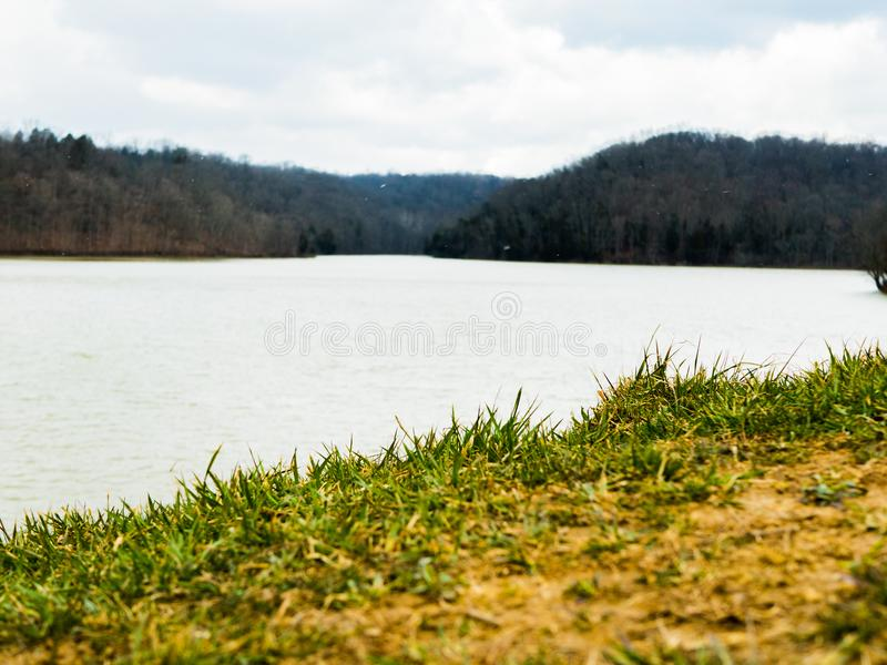 Grama verde com lago e árvores fotografia de stock