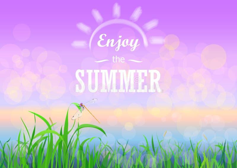 Grama verde com o céu do por do sol do bokeh Aprecie férias de verão text no fundo floral da mola do verão da natureza ilustração stock