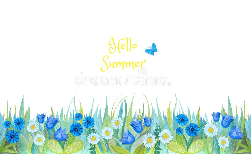 Grama verde com o sino azul brilhante, centáureas, camomila, Plantas isoladas no fundo branco ilustração royalty free