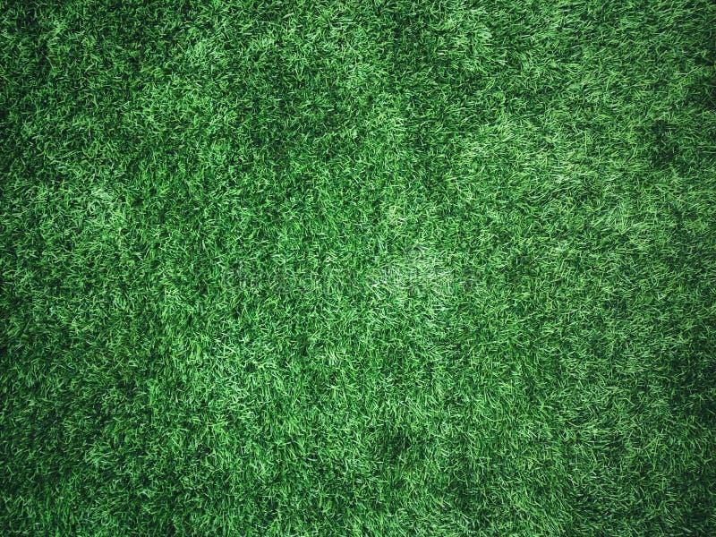 Grama verde como a textura do fundo imagem de stock