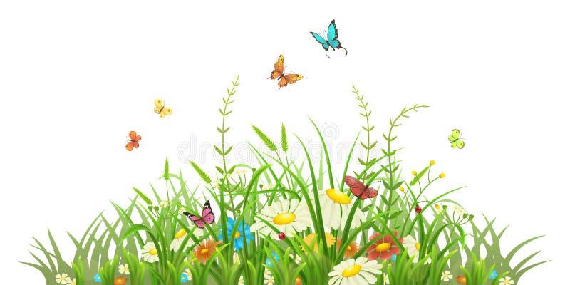 Grama verde da mola com flores ilustração stock