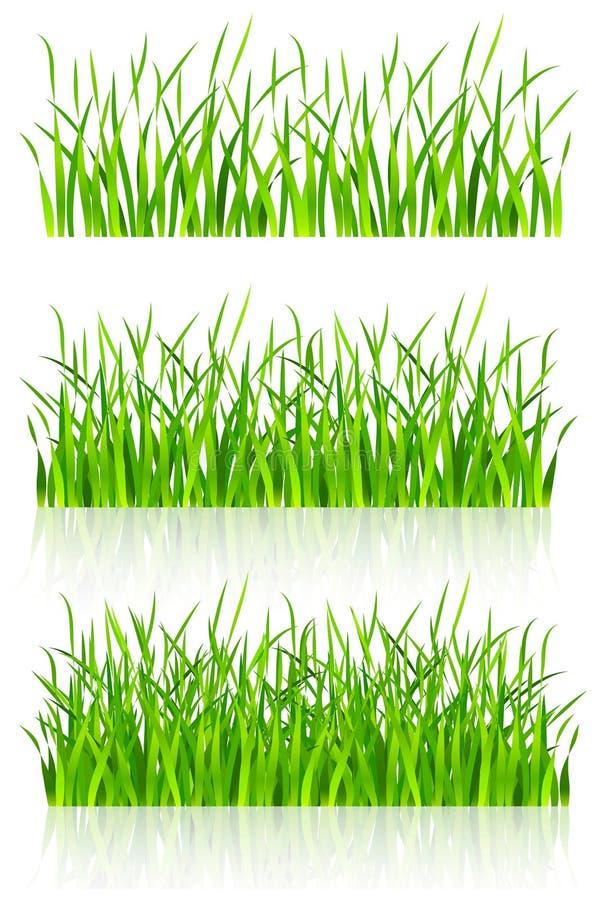 Grama verde densa ilustração royalty free