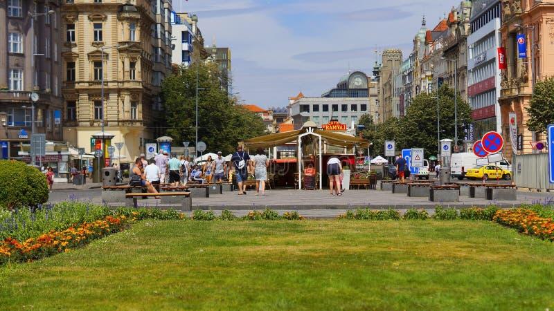 Grama verde e arbustos em Wenceslas Square no centro de Praga em um dia ensolarado do verão imagens de stock