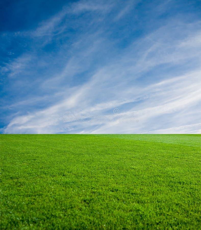 Grama verde e céu imagens de stock